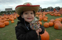 Fall festival in long island keeping the tradition of fun alive.
